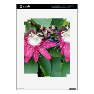 Two Red Passion Flowers Closeup Outdoors in Nature Skin For iPad 3