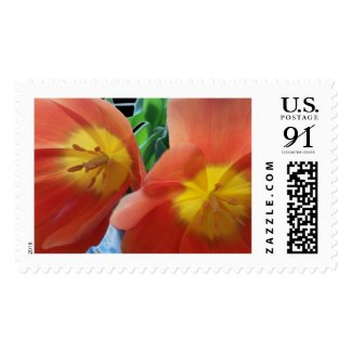 Two Red Tulips, large custom postage stamp