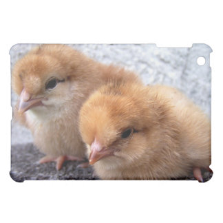 two rhode island red chicks photo iPad mini cases
