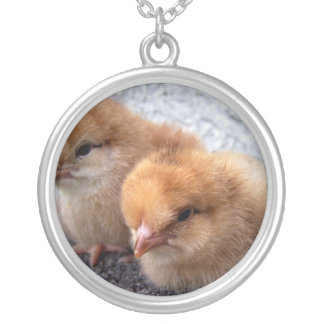 two rhode island red chicks photo vignette round pendant necklace