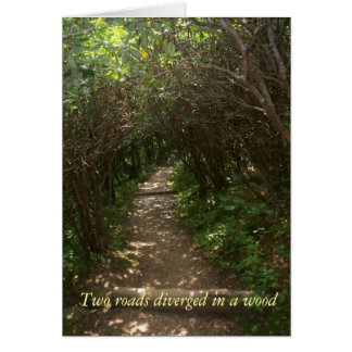Two roads diverged in a wood summer notecard