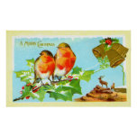 Two robins on holly posters
