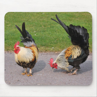 Two roosters mouse pad