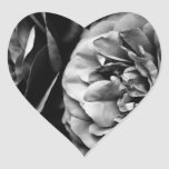 two roses heart sticker