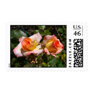Two Roses Postage Stamp