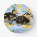 two rouen ducklings facing right one standing round wallclocks