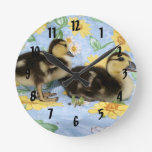 two rouen ducklings facing right one standing round clock