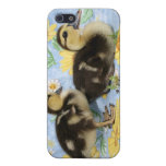 two rouen ducklings facing right one standing iPhone 5 cover