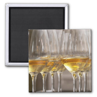 two rows of wine tasting glasses with lucious magnet
