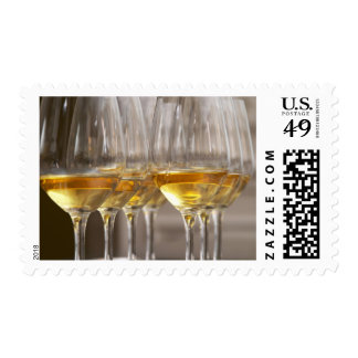two rows of wine tasting glasses with lucious postage