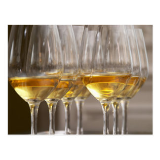 two rows of wine tasting glasses with lucious postcard