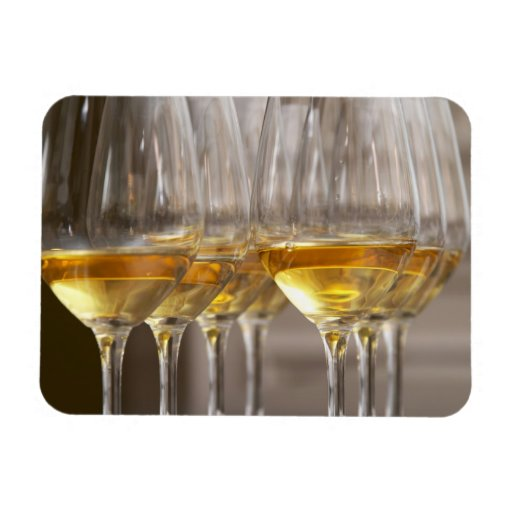 two rows of wine tasting glasses with lucious rectangular photo magnet