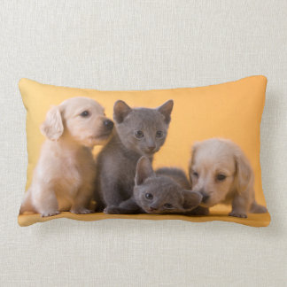 Two Russian Blue Kittens And Two Dachshund Puppies Lumbar Pillow