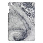 Two S-Shaped Polar Hurricanes iPad Mini Covers