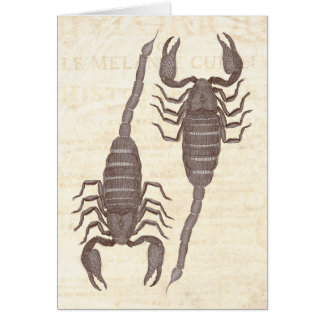 Two Scorpions from Diderot's Encylopedia Greeting Cards