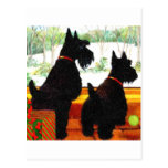 Two Scottie Dogs At Christmas Postcard