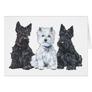 Two Scotties and a Westie Card
