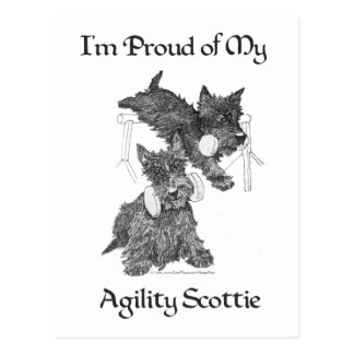 Two Scottish Terriers Agility Postcard