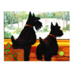 Two Scotty Dogs at Christmas Postcard