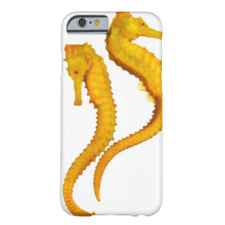 Two Sea Horses shoot on a white background in a Barely There iPhone 6 Case