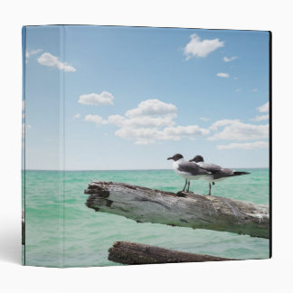 Two seagulls sitting on a dead tree sticking out 3 ring binder