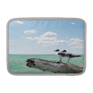 Two seagulls sitting on a dead tree sticking out MacBook sleeves