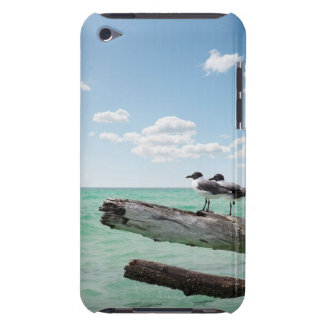 Two seagulls sitting on a dead tree sticking out iPod touch cover