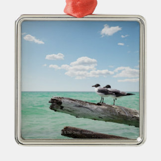 Two seagulls sitting on a dead tree sticking out metal ornament