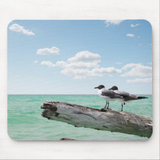 Two seagulls sitting on a dead tree sticking out mouse pad