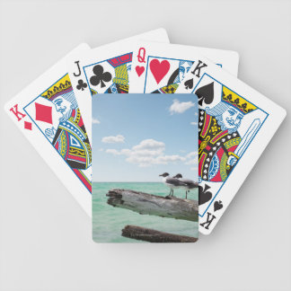 Two seagulls sitting on a dead tree sticking out bicycle playing cards