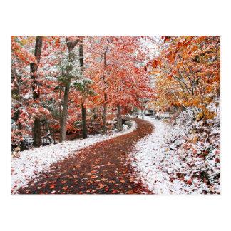 Two Seasons Postcard