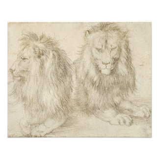 Two Seated Lions by Albrecht Durer Full Color Flyer