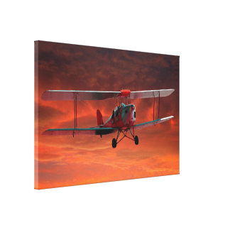 Two seater Tigermoth Gallery Wrap Canvas