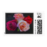 Two Sets of Twin Roses Stamps