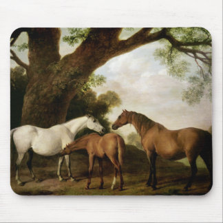 Two Shafto Mares and a Foal, 1774 Mouse Pad