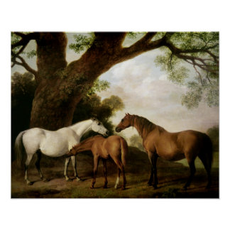 Two Shafto Mares and a Foal, 1774 Poster