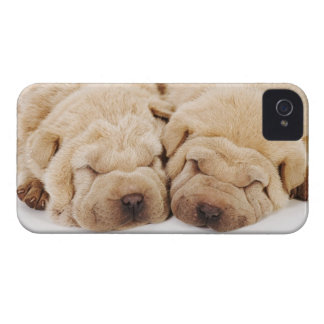 Two Shar Pei puppies sleeping iPhone 4 Case