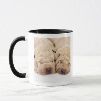 Two Shar Pei puppies sleeping Mug