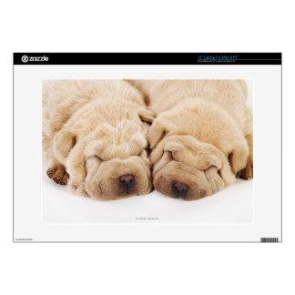 Two Shar Pei puppies sleeping Skin For Laptop