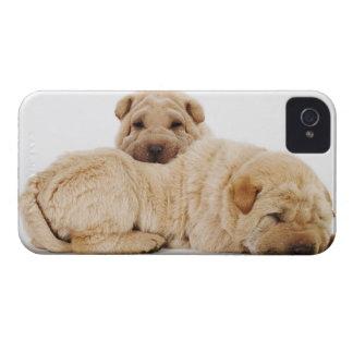Two Shar Pei puppies sleeping, studio shot iPhone 4 Case-Mate Case