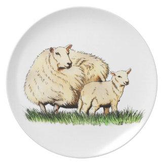 two sheep animal plate