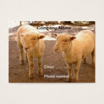 Two Sheep Business Cards
