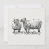 Two Sheep Illustrated Art Invitation