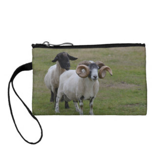 Two Sheeps are Better Than One Coin Purses