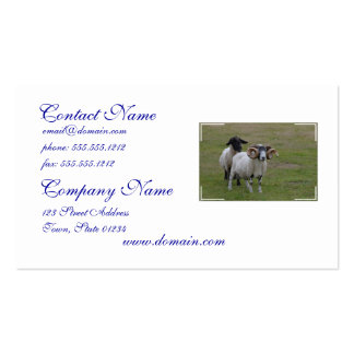 Two Sheeps are Better Than One Double-Sided Standard Business Cards (Pack Of 100)