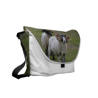 Two Sheeps are Better Than One Messenger Bags