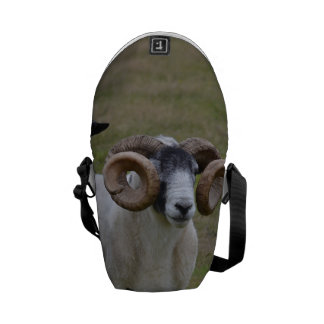 Two Sheeps are Better Than One Courier Bag