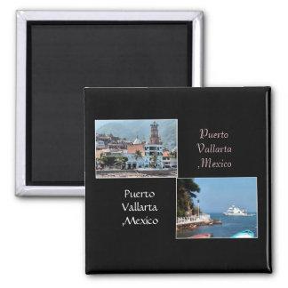 two shots from puerto vallarta magnet