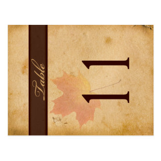 Two Sided Autumn Leaves on Aged Paper Table Number Postcard