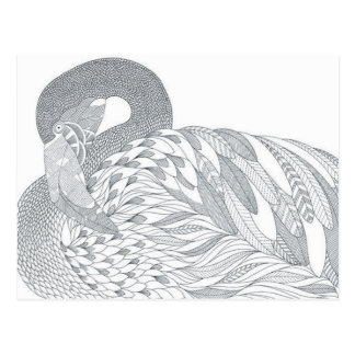 two sided swan adult coloring postcard gift